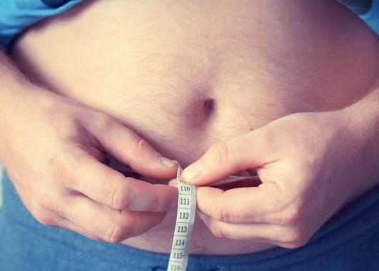 Fett ist nicht gleich Fett